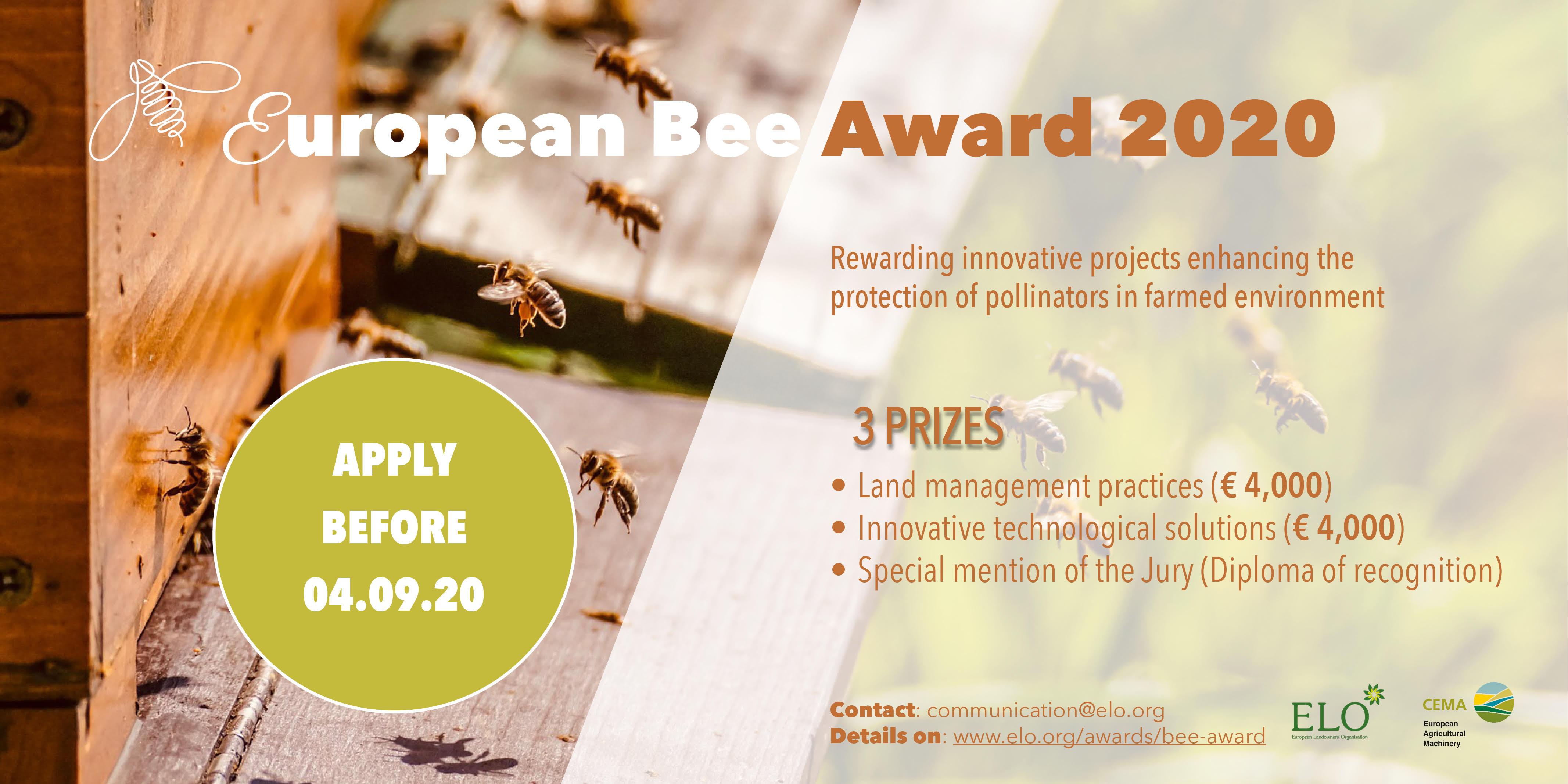 🐝 Bee Award